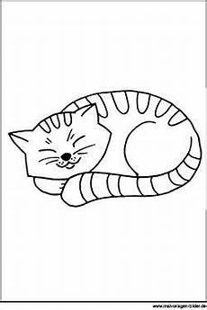 ausmalbild katze beim schlafen katze zum ausmalen