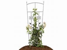 treillis pour plantes grimpantes 82787 treillis pour plantes grimpantes lidl archive des offres promotionnelles