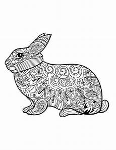 rabbit from animals an coloring book coloring