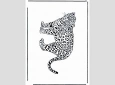 Leopardo 2   Felinos