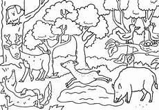ausmalbild wald by sabine voigt nature toonpool
