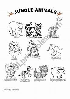 jungle animal worksheets 14319 jungle animals worksheet 1 esl worksheet by evaramos