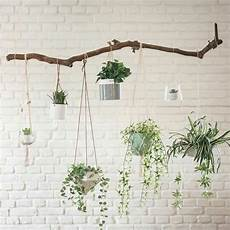 home decor exposed white brick wall indoor plants