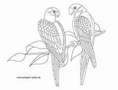 Malvorlage Papagei Einfach Papagei Zeichnen Vorlagen Malvorlagen Gratis