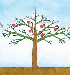 Einen Apfelbaum Richtig Schneiden Das Haus