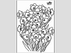 Narcis   Kleurplaten bloemen