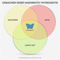 hashimoto thyreoiditis hashimoto thyreoiditis hintergr 252 nde und fakten einfach