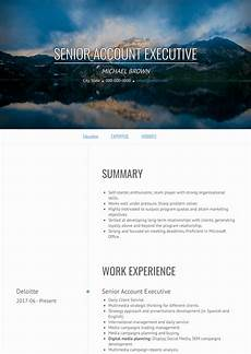 accounts executive resume sles and templates visualcv