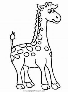 giraffen 39 gratis malvorlage in giraffen tiere ausmalen
