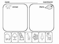 sorting and classification worksheets 7771 pin on classification dichotomous