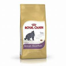 royal canin shorthair 34