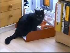 Katzenfressnapf Mit Deckel - schutz fressnapf