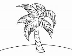 palma llanera para colorear a palm tree coloring page coloringcrew com