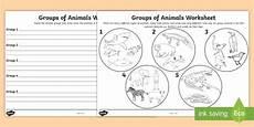 animals living things worksheets 14056 animal groups worksheet made