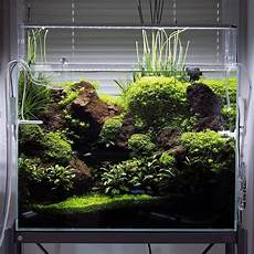 ada aquascape pin by rameez koya on nano tank inspiration aquarium