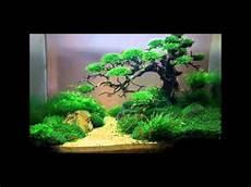 Aquarium Ideas Aquarium Ideen Id 233 Es Aquarium