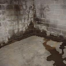 basement waterproofing basement repair basement
