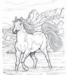 Pferde Bilder Malvorlage Pferde 15 Ausmalbilder Mehr Ausmalbilder Pferde