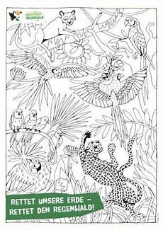 Ausmalbilder Regenwald Tiere Ausmalbilder Dschungel Gratis Kinder Ausmalbilder