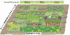 mischkultur mischkultur pflanzplan und hochbeet bepflanzen