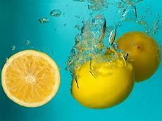 Zitronen Und Limetten Richtig Lagern Emsa