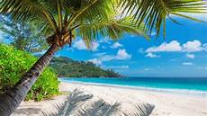 traumhafter bahamas urlaub individuell geplant tourlane