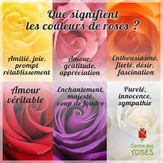 Signification Des Couleurs De Roses Centre Des Roses