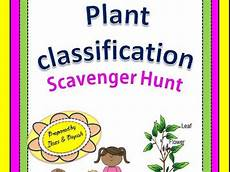 classifying plants worksheets 3rd grade 13524 plant classification scavenger hunt an activity by ilaxippatel teaching resources