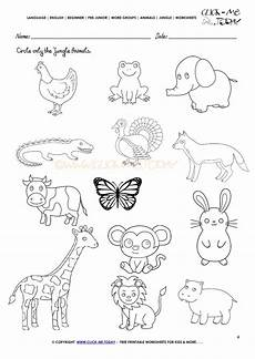 jungle animal worksheets 14319 related keywords suggestions for jungle animals activities