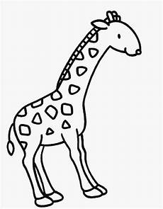 Malvorlagen Giraffe Pdf Ausmalbilder Malvorlagen Giraffe Kostenlos Zum