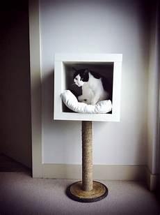 Deviant Ikea Hack Modern Cat Bed