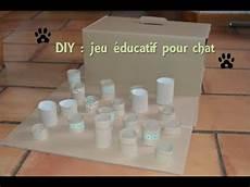D I Y Jeu 233 Ducatif Pour Chat