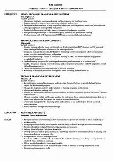 manager training development resume sles velvet