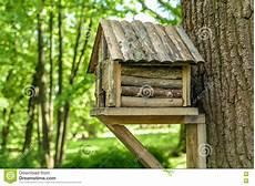 Cabane Dans Un Arbre En Bois Pour Des Oiseaux Image Stock