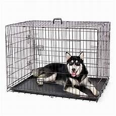 gabbie cani gabbia per cani trasportino per cani