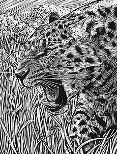 Ausmalbilder Erwachsene Leopard Welcome To Dover Publications Creative Deluxe