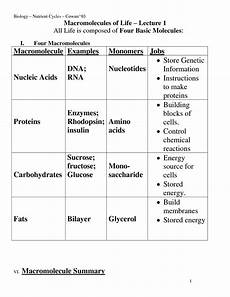 14 best images of macromolecules concept map worksheet macromolecules chart worksheet carbon