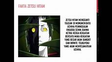 Fakta Zetsu Hitam Dan Zetsu Putih Shippuden