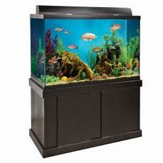 150 gallon fish tank 187 top fin black from pet smart