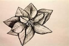 disegni di fiori a matita natale un bouquet di matite ben temperate