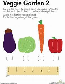 plants measurement worksheets 13586 114 best images about fruits vegetables theme on dramatic play area plant