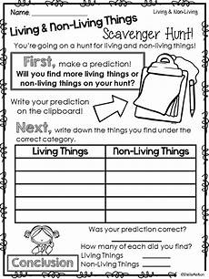 sorting living things worksheets 7894 1000 images about earth day ideas on
