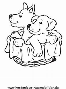 ausmalbilder hunde im korb malvor