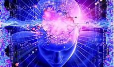 how to actually make the law of attraction work for you collective evolution