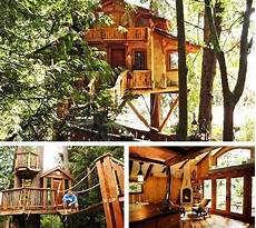 livable tree house plans journey of the featherless real life treehouses