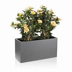 vasi da fiori per esterno vaso per piante fioriera vaso per fiori visio in fibra di