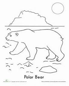 arctic animals coloring pages for preschoolers 17270 1000 images about preschool arctic animal theme on arctic animals worksheets and