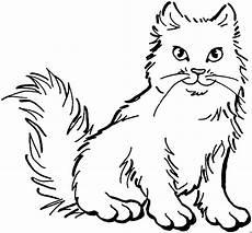 Aquarell Malvorlagen Tiere Malowanki Pies Plueschige Katze Ausmalbild Malvorlage