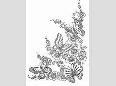 Butterflies   Butterflies & insects Adult Coloring Pages