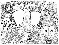 Ausmalbilder Tiere Afrika Animals Colouring Page By Suzanne Munroe